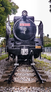 D51 222 steam locomotive coming head on