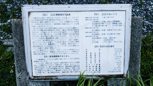 D51 222 steam locomotive information in Japanese