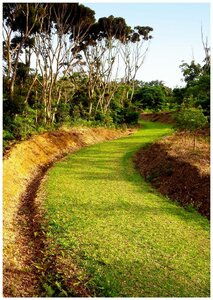 Walk The Green Mile Okinawa hiking trail in your bare feet!