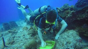 Leaving a waterproof logbook and pencil inside will allow divers to note their find