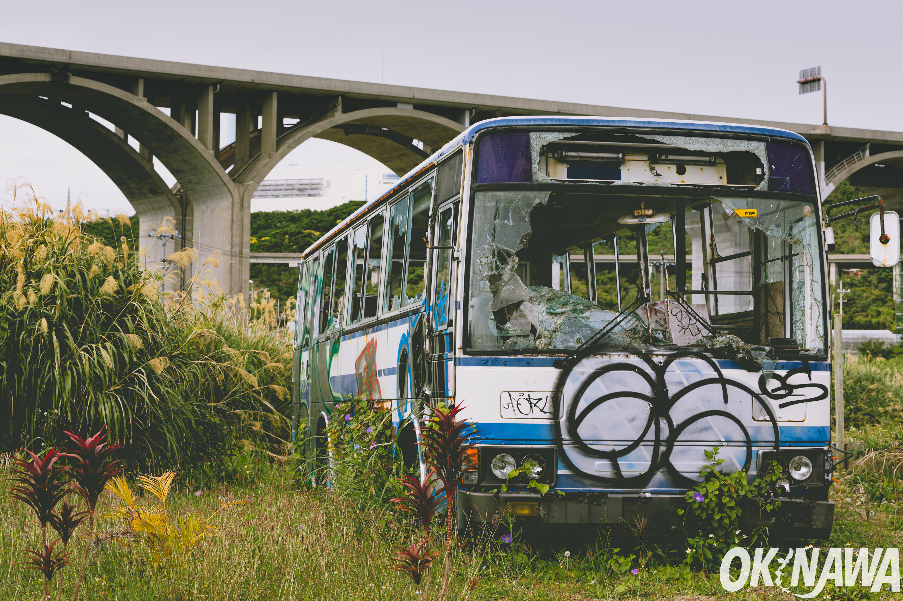 Ride The Bus In Okinawa
